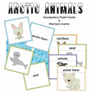 Arctic Animals Flash Cards and Memory Game