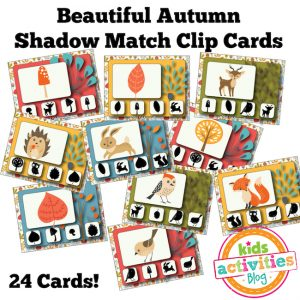 Autumn Shadow Match Clip Cards