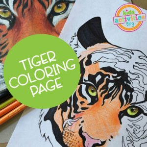 Printable Tiger Coloring Page Sheet