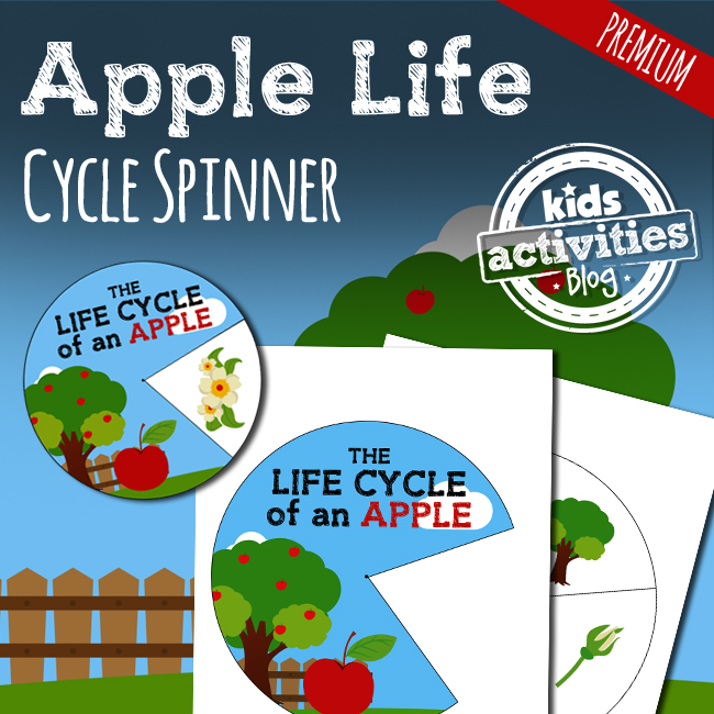 Apples - Apple Life Cycle Spinner Craft Activity for Preschool Science