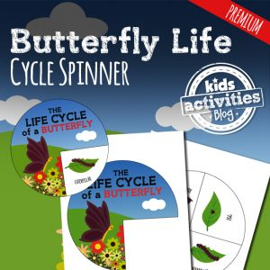 STEM Butterfly Life Cycle Spinner Craft