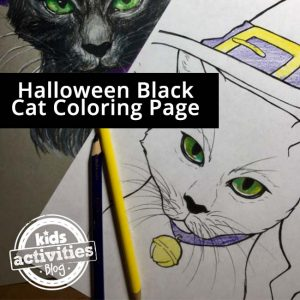 Halloween Coloring Page – Black Cat