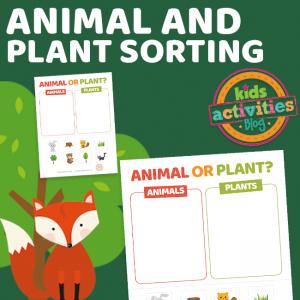Printable Animal or Plant Sorting Worksheet Printable - The Printables Library at KidsActivities.com