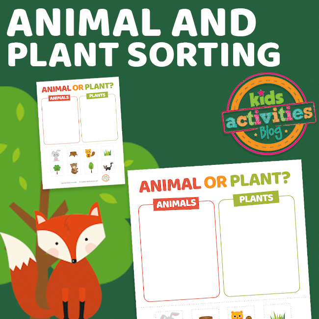 Printable Animal or Plant Sorting Worksheet Printable - The Printables Library at KidsActivities.com