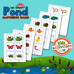 Pond Matching Game