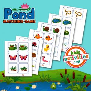 Pond Matching Game