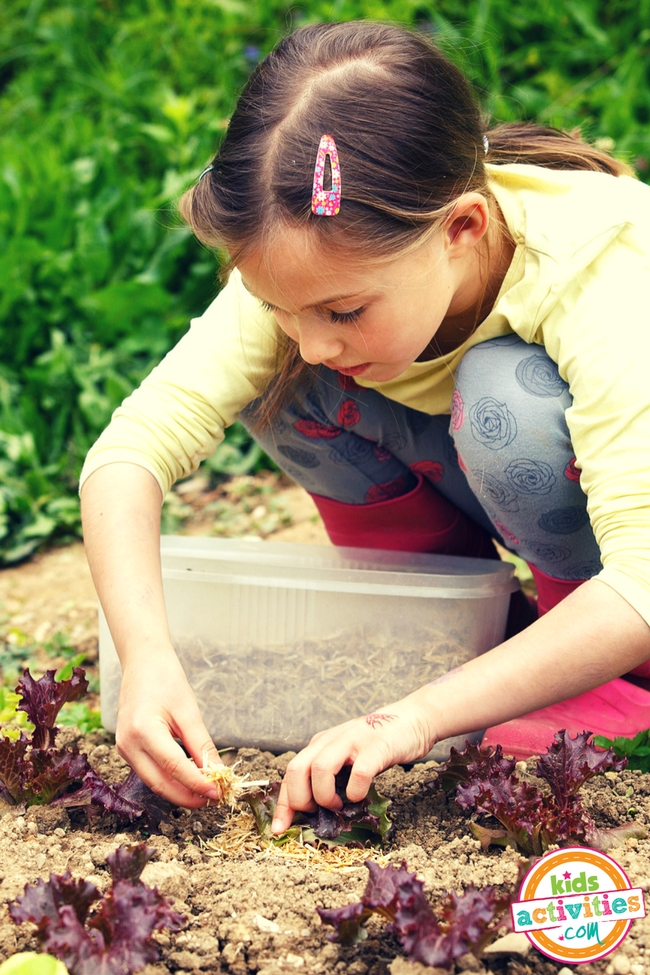 Free Gardening Activity Guide for Kids Studying Gardens, Plant Life Cycle, and How to Garden for Kids - Printables.KidsActivities.com